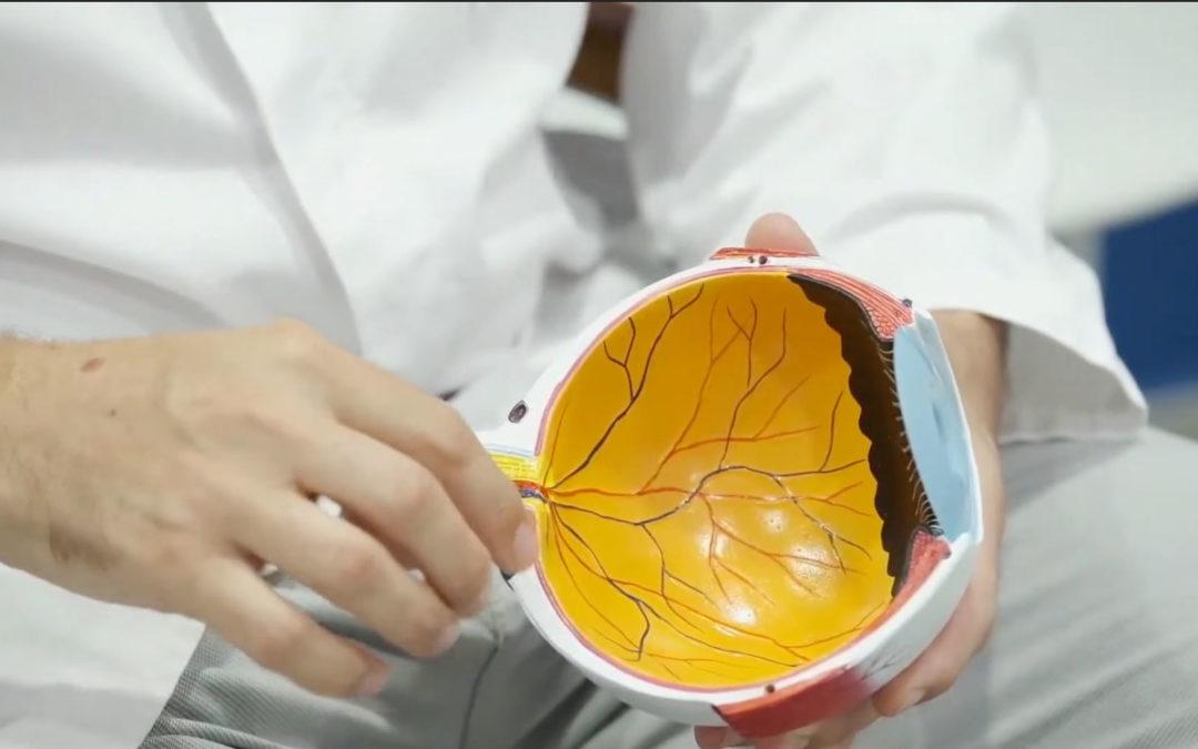Entrevista Dr. Jaume Català – ¿Qué es la retinosis pigmentaria?